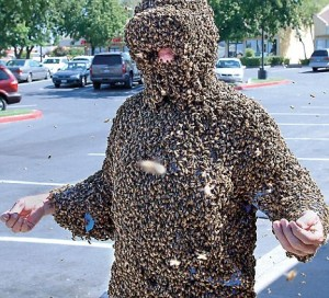He was recently fired for showing up to work in a suit of bees